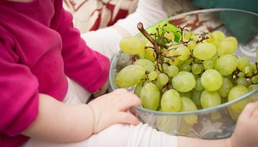Zdrowie Dzieci Naszą Troską – seminarium