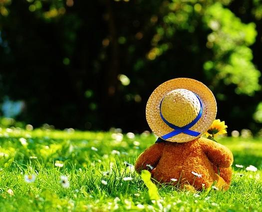 teddy-bear-797577_640