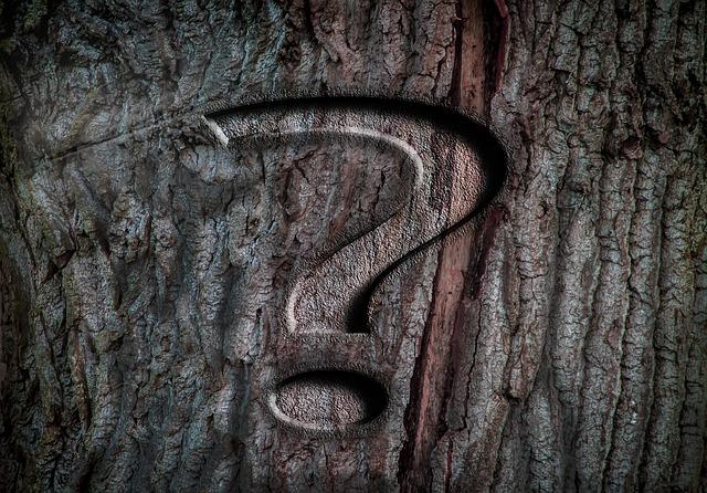 Rada Rodziców w pytaniach i odpowiedziach