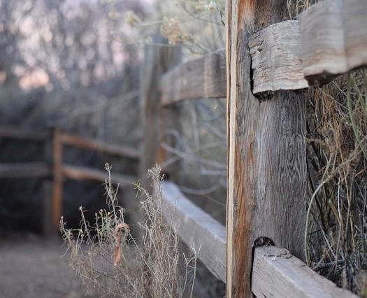 fence-641784_640